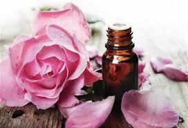 玫瑰精油的作用和使用方法