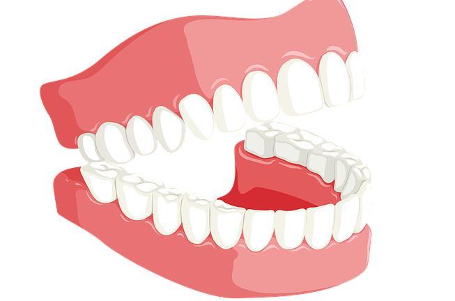 牙齿,牙龈,口腔健康,牙釉质