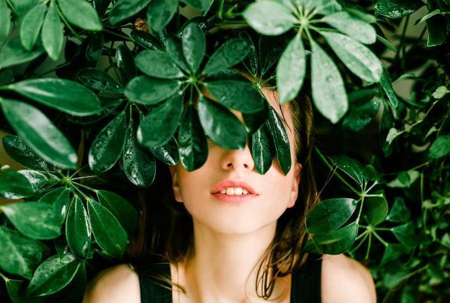 增长,女孩,封面,工厂,厂,户外,时尚,样式,树,树叶,漂亮,湿,热带,热带的,美丽,脸孔,花园,覆盖,雨,颜色,皮肤,脸蛋