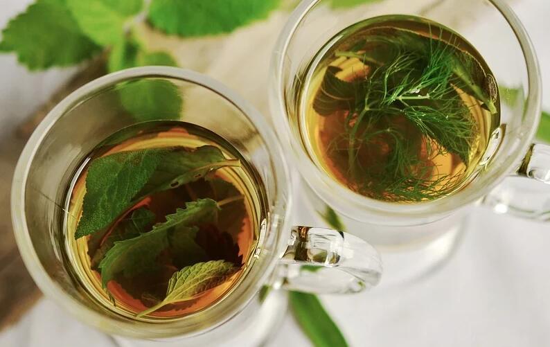 凉茶 草药 T恤 薄荷 圣人 茴香的味道 健康 喝 药材 愈合 叶子 草药茶 草药植物